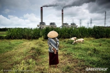 A shepherdess watches over her flock of sheep that graze near a coal power plant in Jepara, Central Java. 12/26/2012 © Kemal Jufri/ Greenpeace
