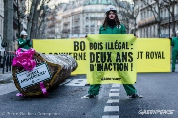 Credit: Pierre Baelen/Greenpeace