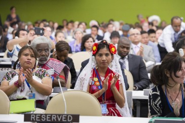 UN Permanent Forum on Indigenous Issues opens its 2014 session at UN Headquarters. UN Photo/Eskinder Debebe