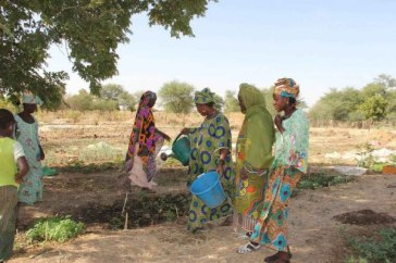 Drought in the Sahel region makes farming and gardening very diffcult for the women of Yelimne, Mali. Photo: WFP/Daouda Guirou