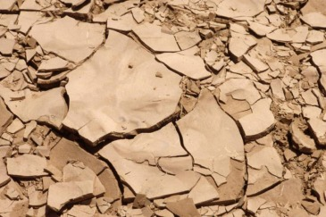 Example of good fertile earth that has dried and cracked from lack of rain. Photo: FAO/Jeanette Van Acker