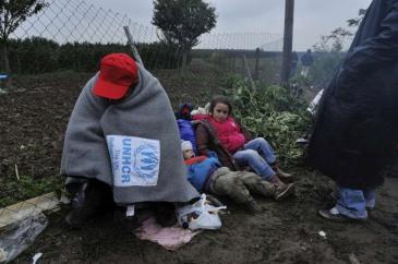 11-05-2015Winter_Migrants