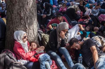 11-20-2015Balkans_Migrants