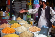 Because pulses yield two to three times higher prices than cereals, they also offer great potential to lift farmers out of rural poverty. | FAO