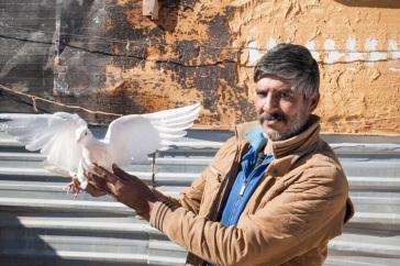 ogb-95752-jordan-syria-refugee-zaatari-bird