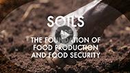 small_soils_videobadgePR