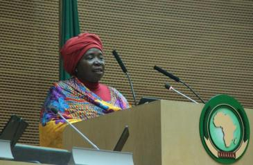 8th_african_union_gender_pre-summit_on_2016_african_year_of_human_rights_with_particular_focus_on_the_rights_of_women_17_-_21_january_2016_5