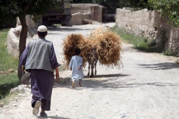 09-10-fao-afghan