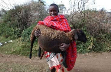 Maasai_-629x410