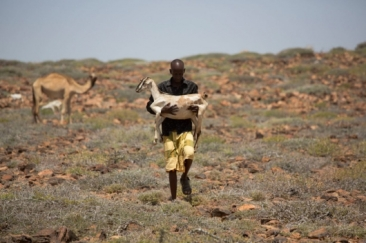 _Somalia-man_