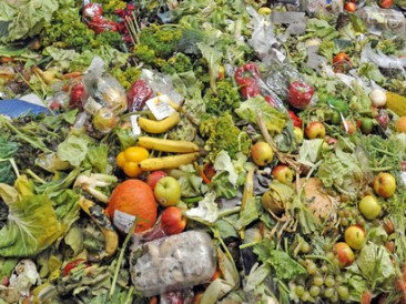 Food-waste-quickly-generates-methane