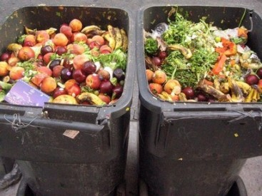 Fruits-and-vegetables-plus-roots-and-tubers-have-the-highest-wastage-rates-of-any-food