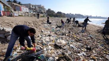 beach-clean-up_0