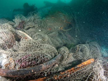The-consequences-of-ghost-fishing-are-shocking