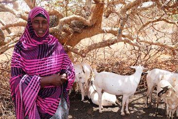 ethiopia-ewea-DSCF0552