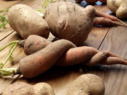 Ugly-carrots-and-potatoes
