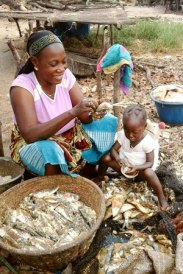 Senegal_FishDrying_September2015_59_300x450