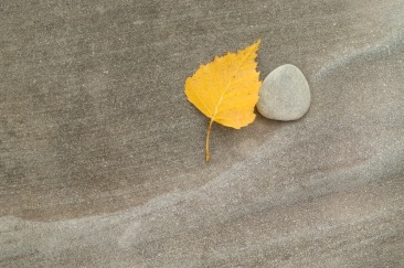 Leaf and Stone in SiberiaGelbes Blatt