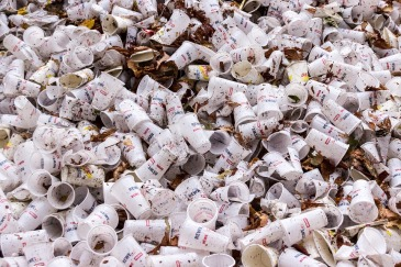 plastic-cups-973103_960_720