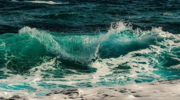 surf-3450584_NEAT