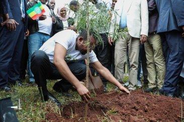 Abiy PM Ethiopia