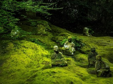 Statues-of-Buddha