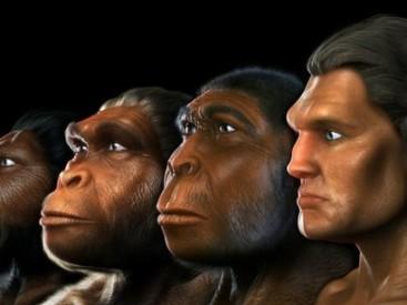 The-evolution-of-Homo-Sapiens