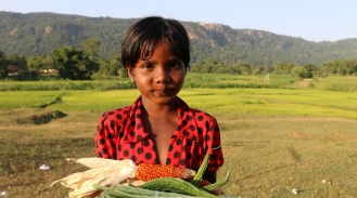 India_crops_4_Banner_image_Photo_by_RCDC