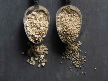 Oats-are-food-sources-of-choline