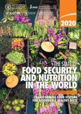 food-security-and-nutrition_