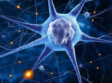 In-our-human-brains-there-are-billions-of-chemically-moderated-connections-between-neurons
