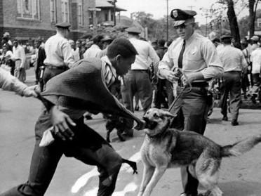 Police-dog-reaction-against-a-demonstrator