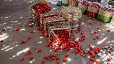 desperdicio_alimentos-629x354