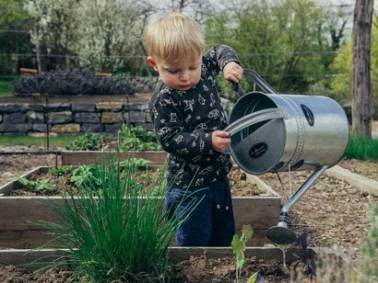 By-growing-vegetables-children-learn-natures-way