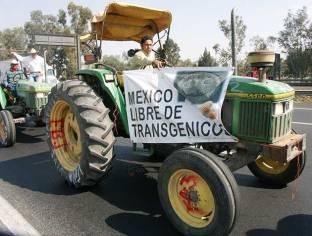 tractores-en-DF-7_