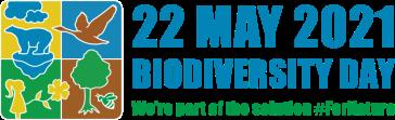 idb-2021-logo-en-web