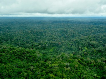 Ecuadorian-Amazon-in-Sapara-Indigenous-Nation-territory-such-governance-is-best-bet-against