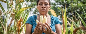 OES_42074_guatemala_food