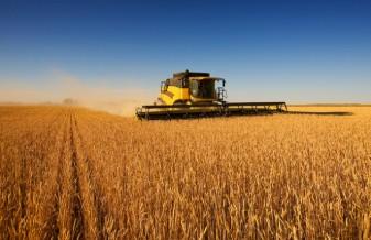 Arg-agriculture-629x408