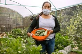mexico_ruralwomenday2021banner_greenhousezucchini_1_960x640